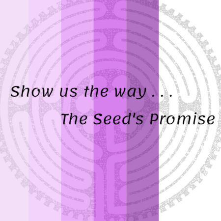 The Seed's Promise